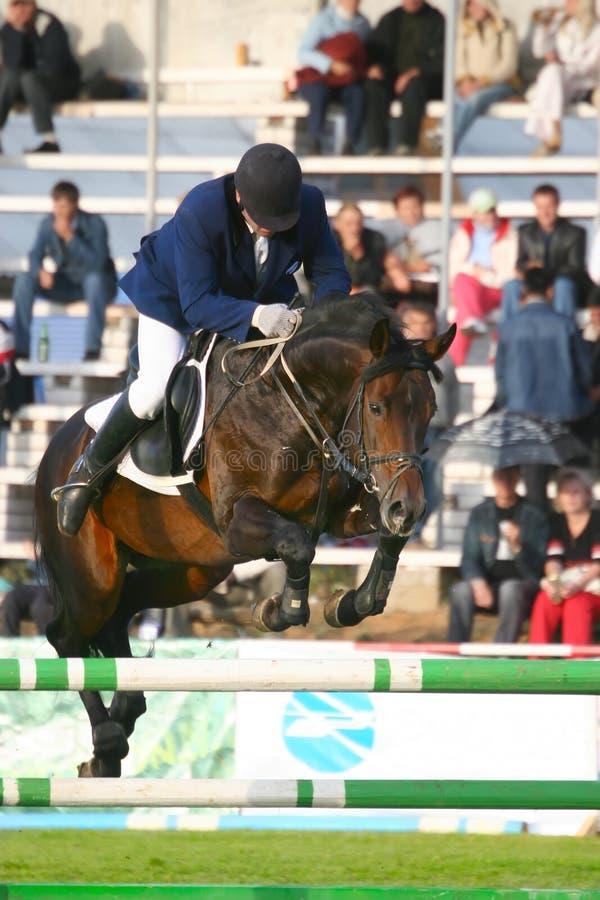 Der Jockey springt durch ein Hindernis stockbild