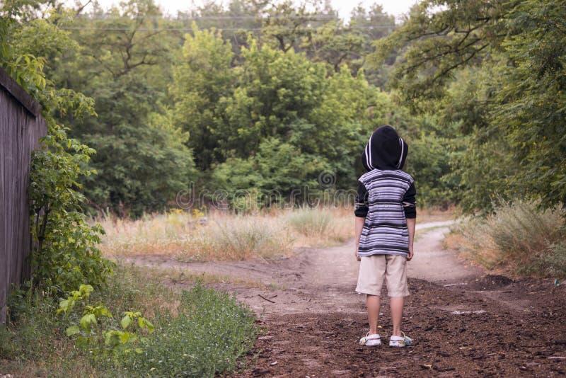 Download Der Junge denkt stockbild. Bild von baum, pfad, wahl - 96931285
