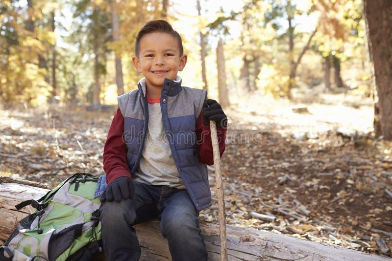 Der Junge, der in einem Wald wandert, sitzt auf dem gefallenen Baum, der zur Kamera schaut lizenzfreies stockbild