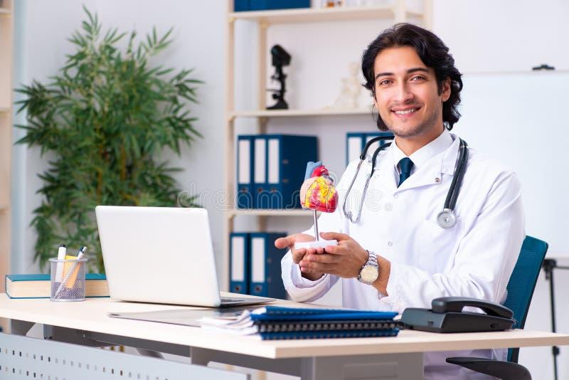 Der junge Doktorkardiologe, der in der Klinik arbeitet stockfotos