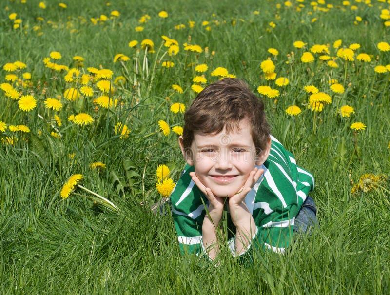 Der Junge ist auf dem grünen Gras lizenzfreies stockfoto