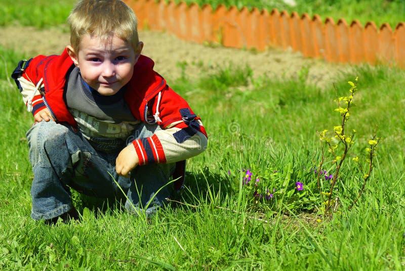 Der Junge sitzt auf einem Gras lizenzfreies stockbild