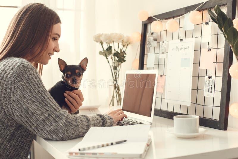 Der jungen Frau des Freiberuflers Innenministeriumkonzeptwinteratmosphäre zuhause, die mit Haustierfunktion sitzt stockfotografie