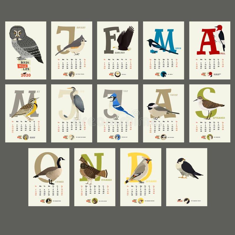 Der Kalender 2020 das wilde Leben der Vögel stock abbildung