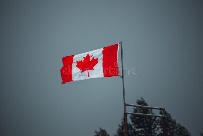 Der Kanadier, der im starken Wind als Ansätze des schlechten Wetters und der Himmel fahnenschwenkend ist, dreht sich grau Sch?ner stockfoto