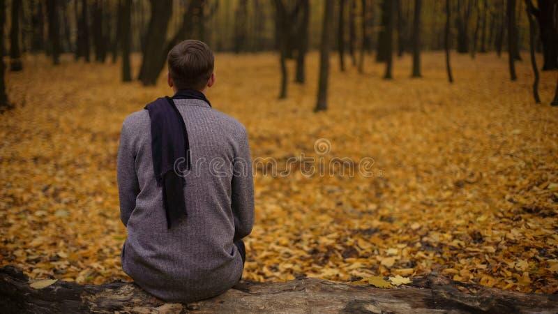 Der Kerl, der im Park sitzt, spornte indem schöne Natur und das Denken an Vorleben an lizenzfreie stockfotos