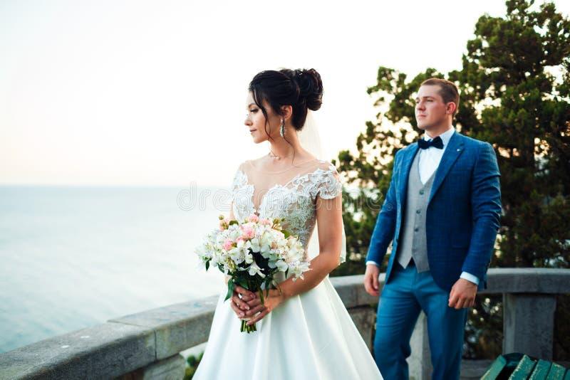 Der Kerl und das M?dchen l?cheln an einander Klassische junge Hochzeitspaare lizenzfreie stockbilder