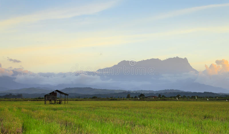 Der Kinabalu bei Sabah, Borneo, Malaysia stockbild