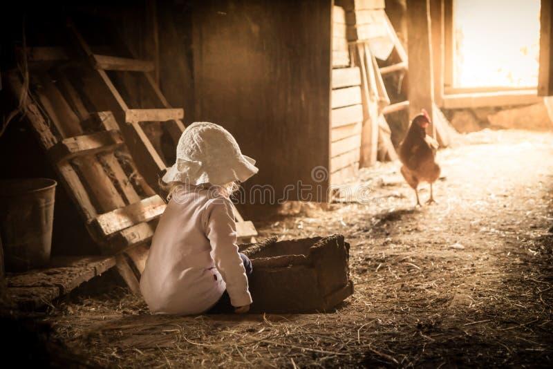 Der Kinderlandwirt, der in der Scheune mit spielt, chiken im rustikalen Geflügelhaus im Landschaftshof, der Lebensstil bewirtscha lizenzfreie stockbilder
