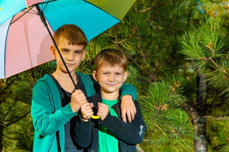 Der kleine Junge und sein älterer Bruder sind unter einem hellen mehrfarbigen Regenschirm stockbilder