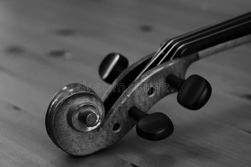 Der Kopf der Violine im blakc und im Weiß stockfoto