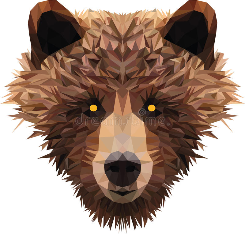 Der Kopf des niedrigen Polybären stockfoto