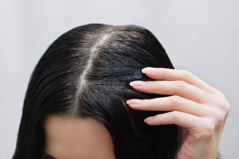 Der Kopf eines kaukasischen Mädchens mit dem schwarzen grauen Haar Ansicht von oben lizenzfreies stockfoto