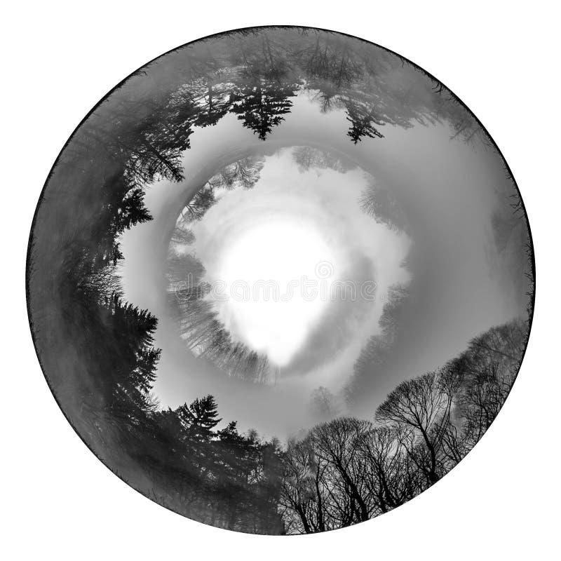 Der Kreis von der Natur stockbild