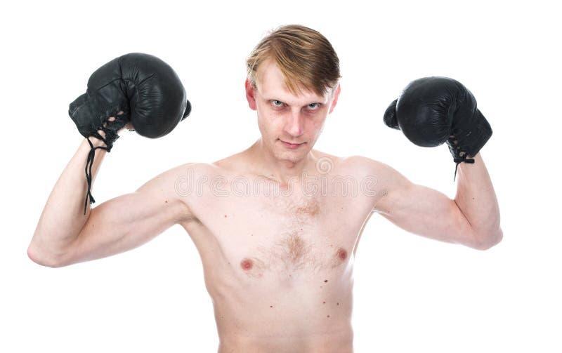 Der lächerliche Boxer lizenzfreie stockfotos