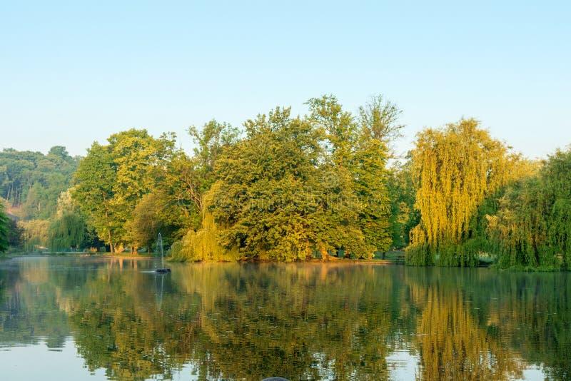 Der lakeshore frühe Morgen stockfoto