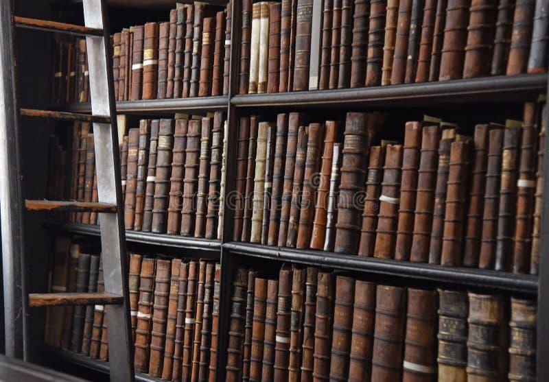 Der lange Raum in der alten Bibliothek am Dreiheits-College Dublin lizenzfreie stockbilder