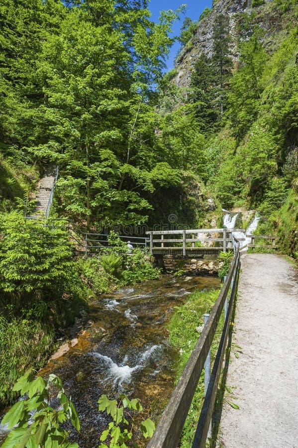 Der Lier-Bach mit den allen Heiligwasserfällen in Oppenau stockfoto