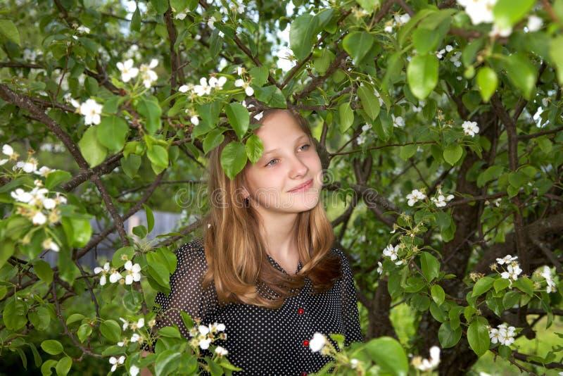 Der Mädchenjugendliche unter Laub einer Birne stockfotografie