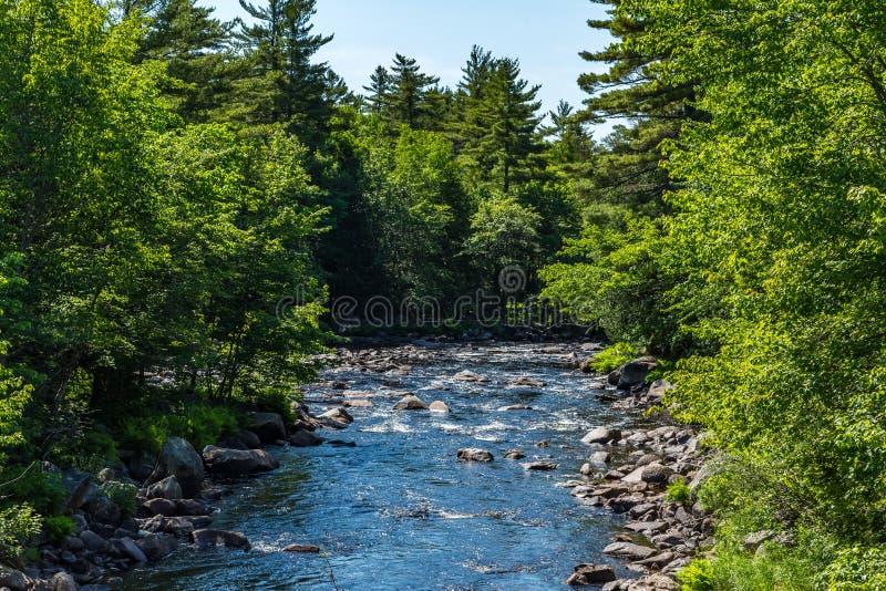 Der Machias-Fluss stockbild