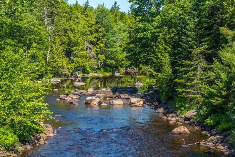 Der Machias-Fluss lizenzfreie stockfotografie