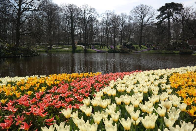 Der magische Garten von Holland lizenzfreie stockfotografie