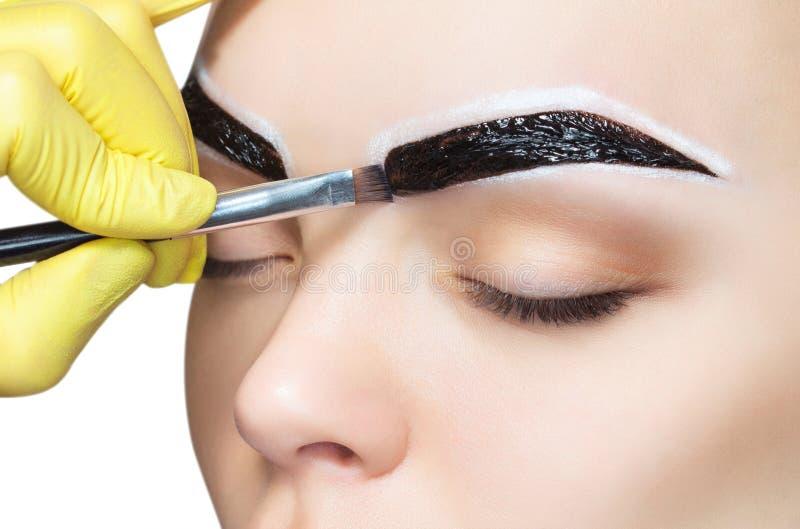 Der Make-upkünstler wendet eine Farbenaugenbrauenfärbung auf den Augenbrauen eines jungen Mädchens an stockbilder