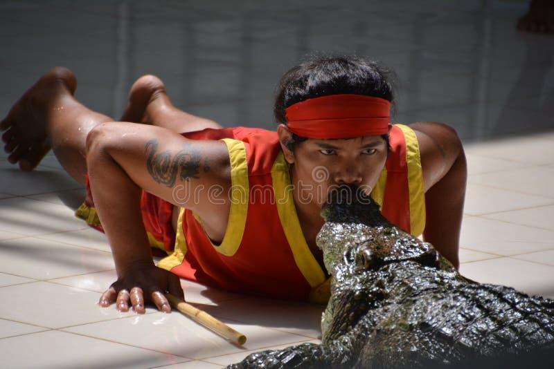 Der Mann küsst das Krokodil Krokodilshow an Phuket-Zoo, Thailand - Dezember 2015: Krokodilshow am Krokodilbauernhof lizenzfreie stockfotografie