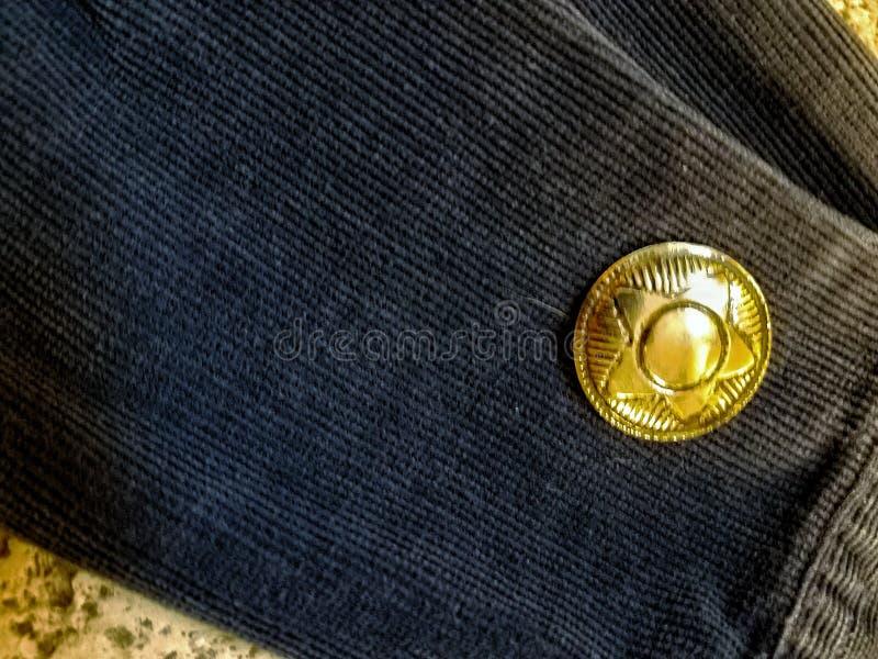 Der Mann mit dem Stern Indigo blaue Goldschildkröte auf Riffgestein lizenzfreies stockfoto