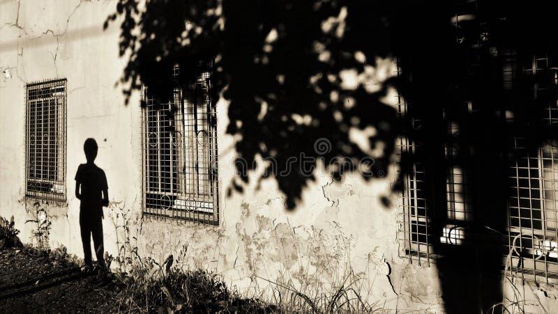 Der Mann und der Baum - Schattenbilder auf der alten Wand stockfoto