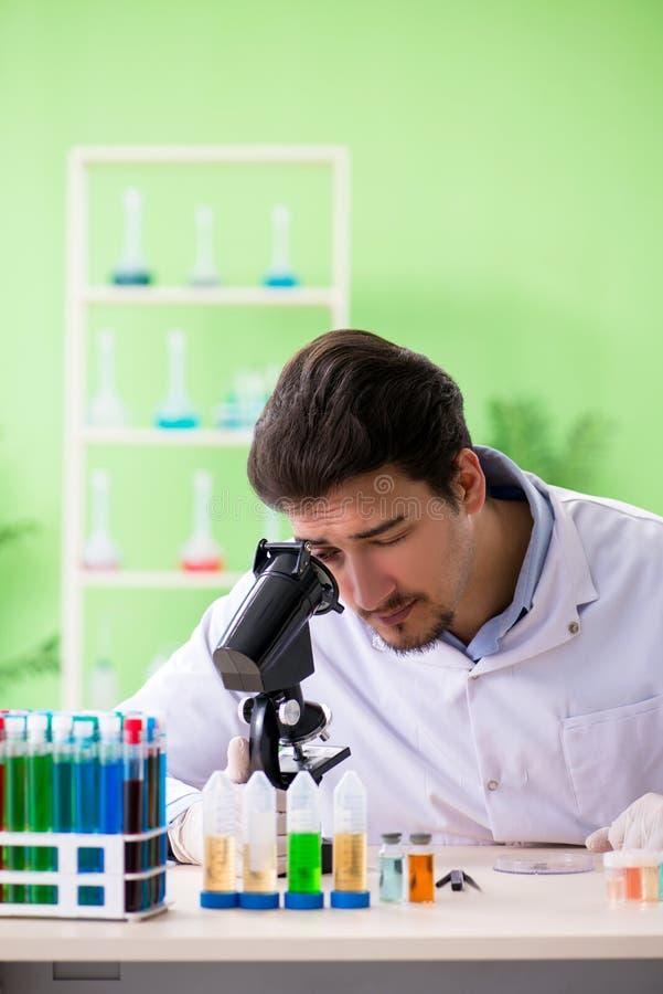 Der Mannchemiker, der im Labor arbeitet lizenzfreies stockbild