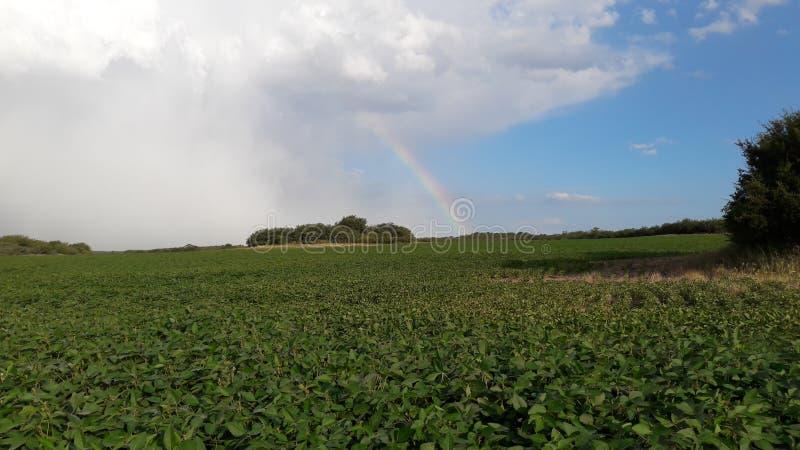 Der meiste Beaitiful-Regenbogen lizenzfreie stockbilder