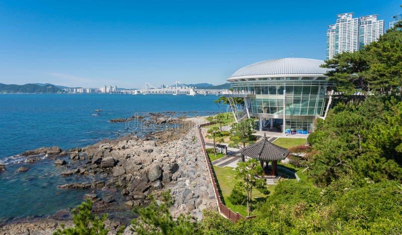 Der moderne Museumsname apec Busan Südkorea lizenzfreie stockbilder
