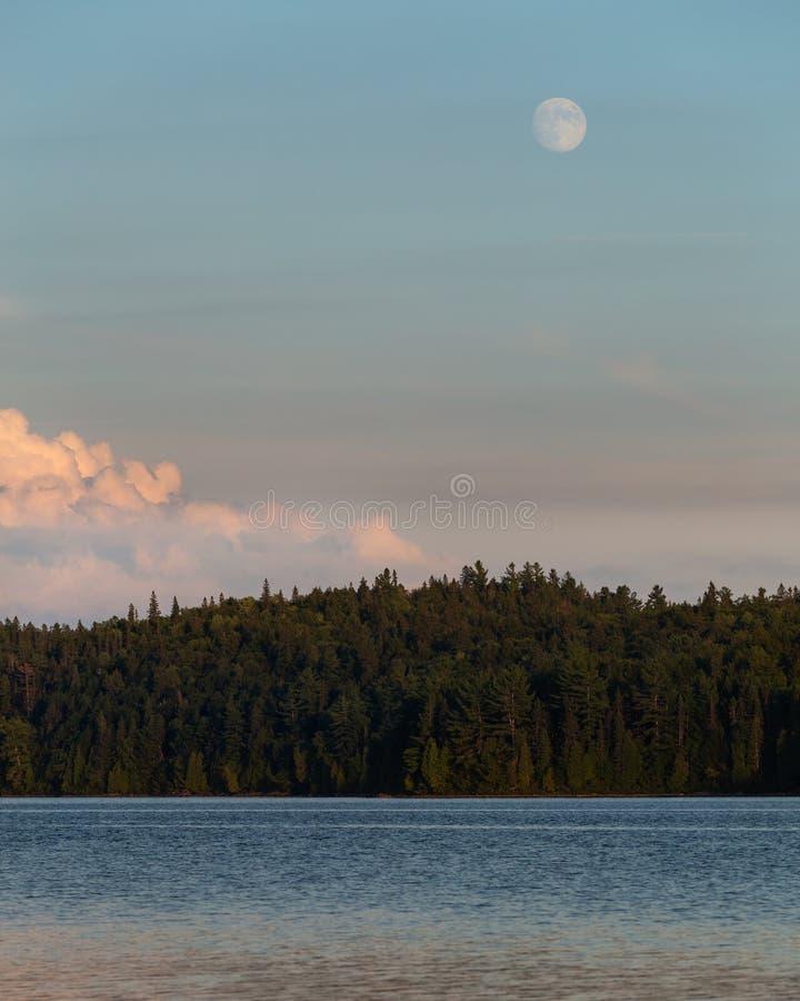 Der Mond, der über Rosa steigt, bewölkt grünen Wald-und See-Sonnenuntergang lizenzfreie stockfotografie