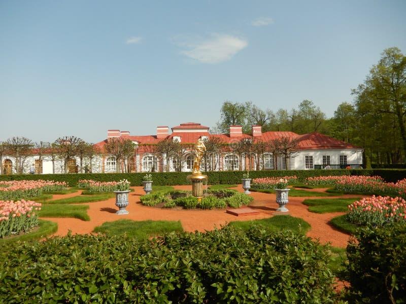 Der Monplaisir-Palast in Peterhof St Petersburg Russland stockfoto