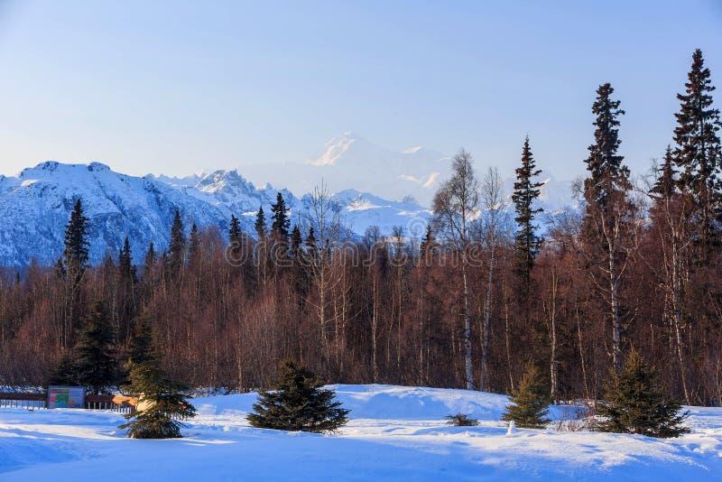 Der Mount McKinley, Nationalpark Denali und Konserve lizenzfreie stockfotos