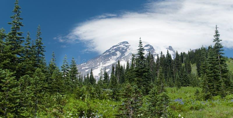 Der Mount Rainier lizenzfreies stockbild