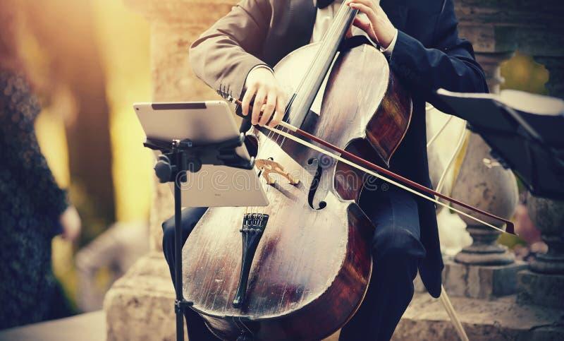 Der Musiker spielt das Cello stockfotos