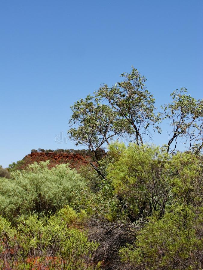 Der Nationalpark Atarrka lizenzfreie stockbilder