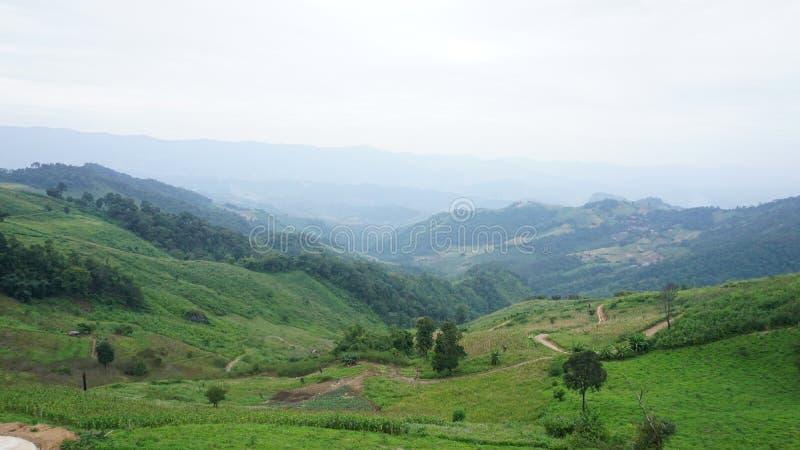Der Nationalpark Doi Pha Tang lizenzfreie stockbilder