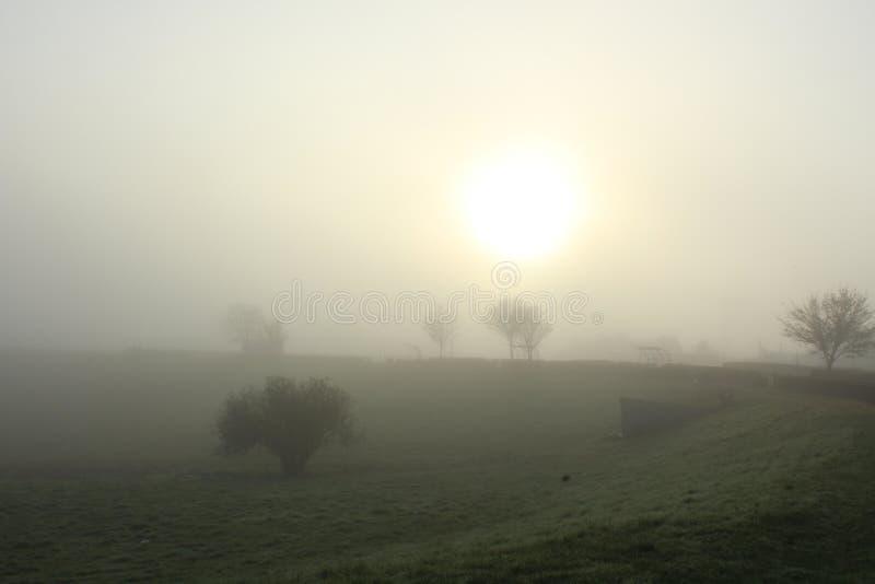 Der Nebel steigt ab lizenzfreie stockfotos