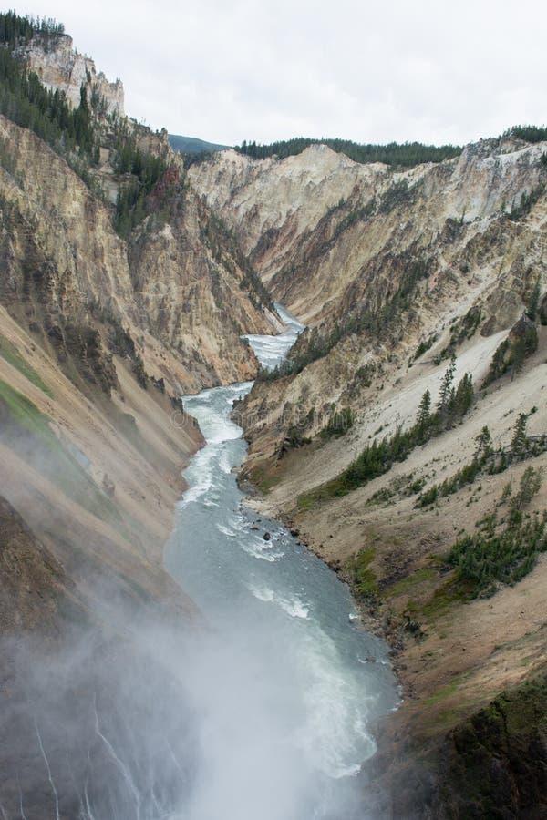 Der nebelhafte Fluss stockfotos