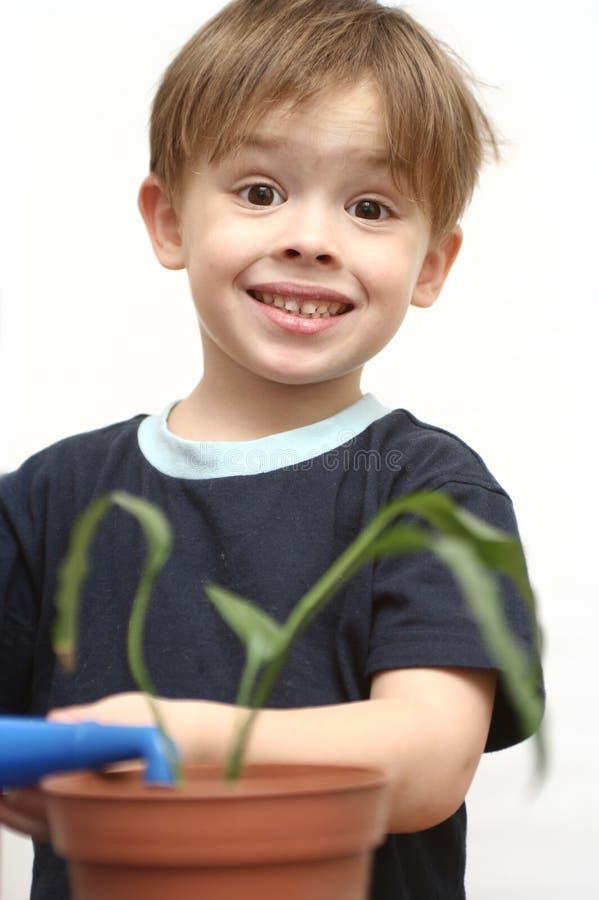 Der nette Junge stockbild