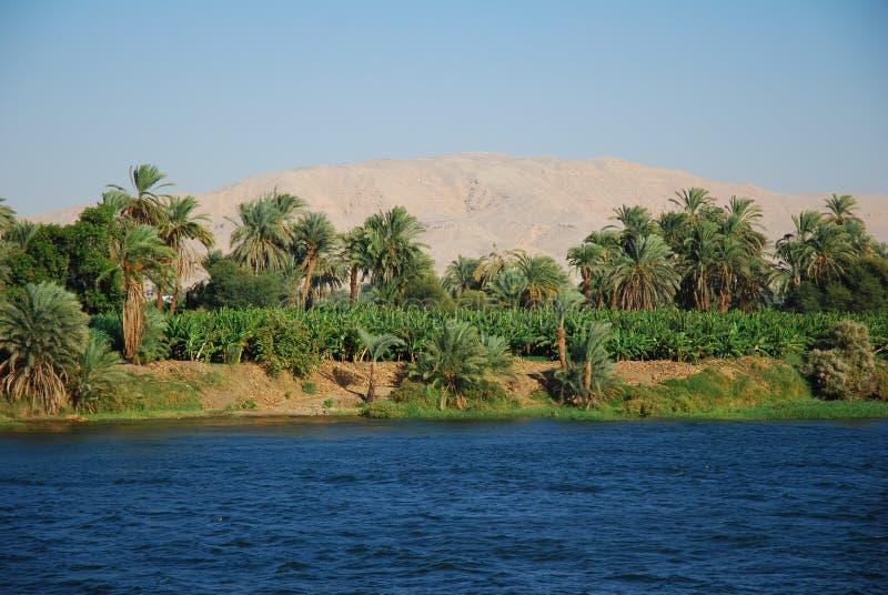 Der Nil-Fluss stockfotos