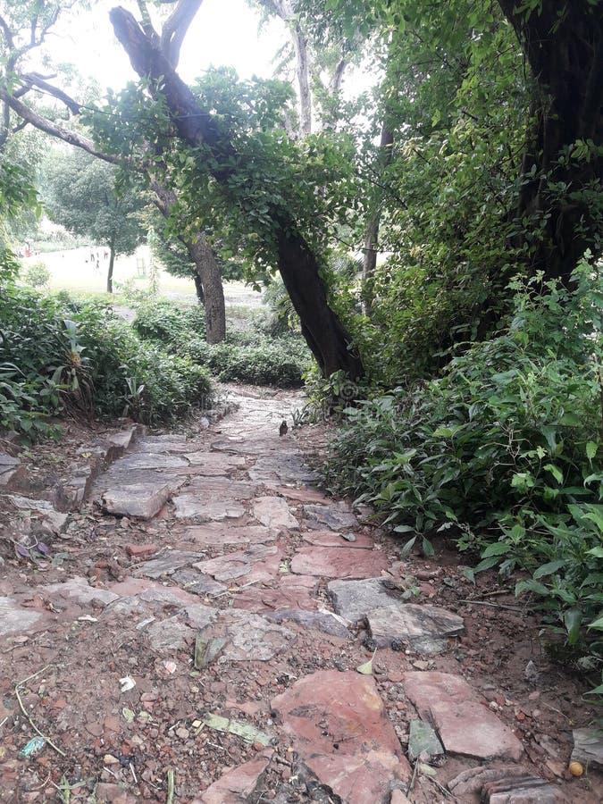 Der Ort des pakistanischen Lahore-Gartens lizenzfreies stockfoto