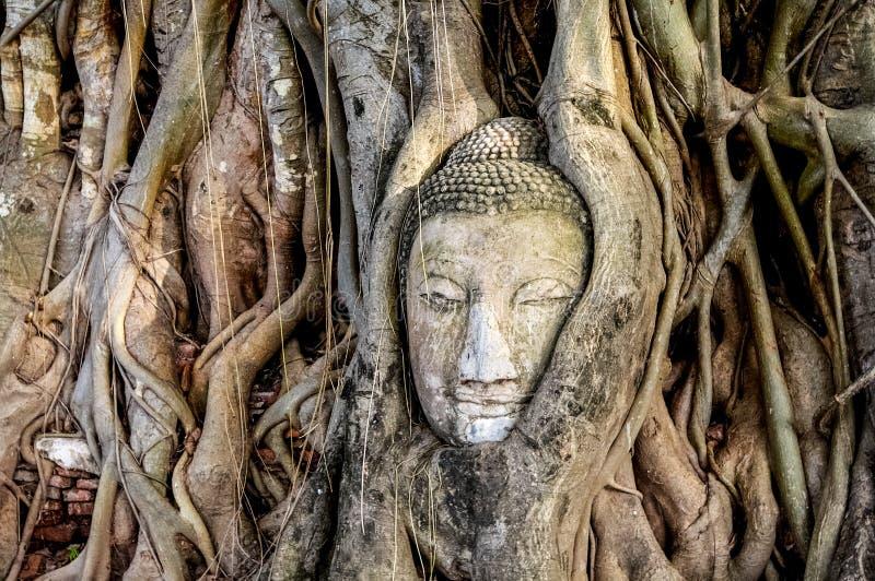 Der Palast komplexer Ayutthaya Thailand stockbild