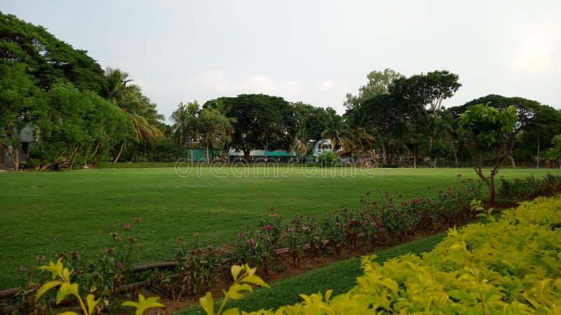 Der Park mit wonderfull grünem Naturrasen stockbild