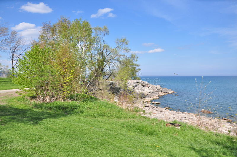 Der Park Toronto des Bluffers AN stockbild