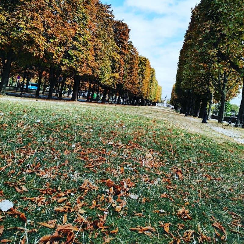 Der Park von Paris stockbild