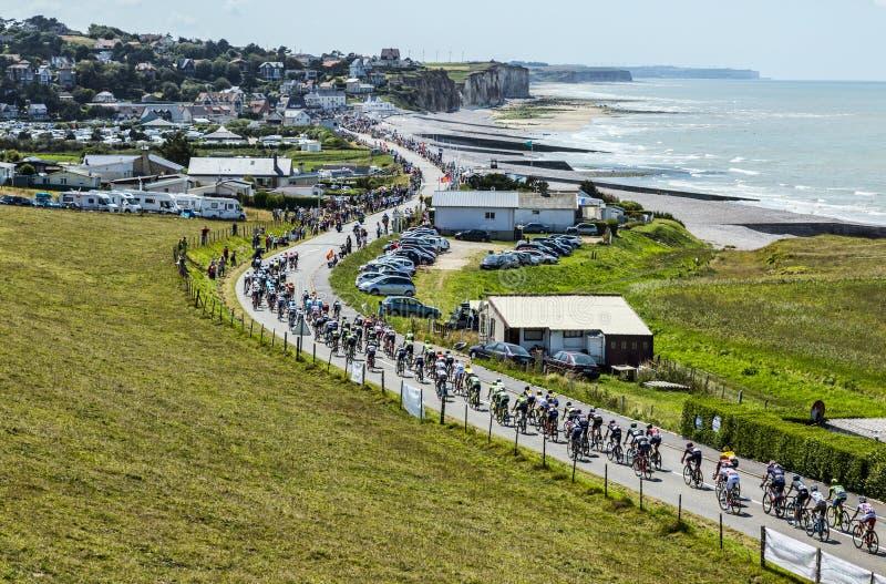 Der Peloton in Normandie - Tour de France 2015 lizenzfreie stockfotografie